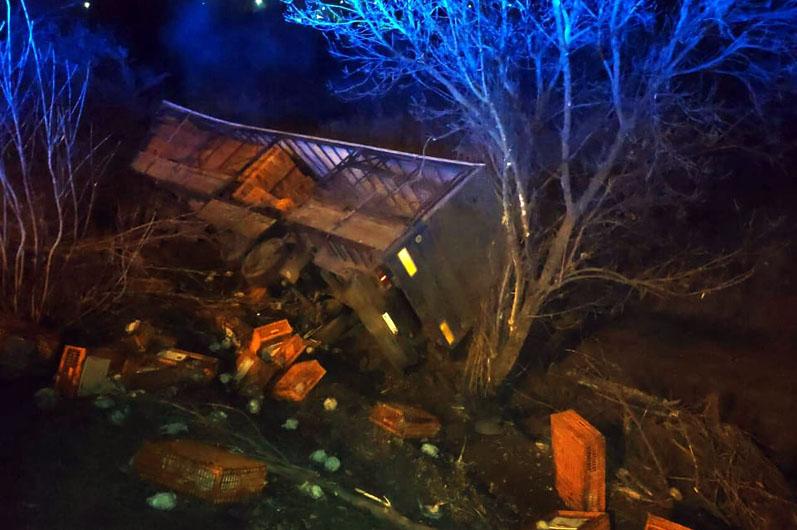 Под Днепром перевернулся грузовик с курами