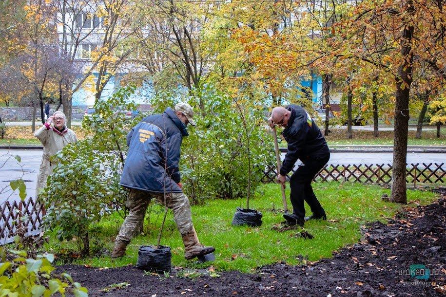 В Днепре продолжается озеленение города: уже высажено 6 тысяч деревьев и кустов