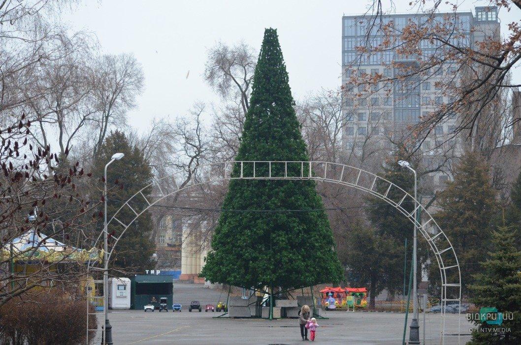 Пока без 3D-элементов: в парке Глобы установили новогоднюю ёлку (ФОТО)