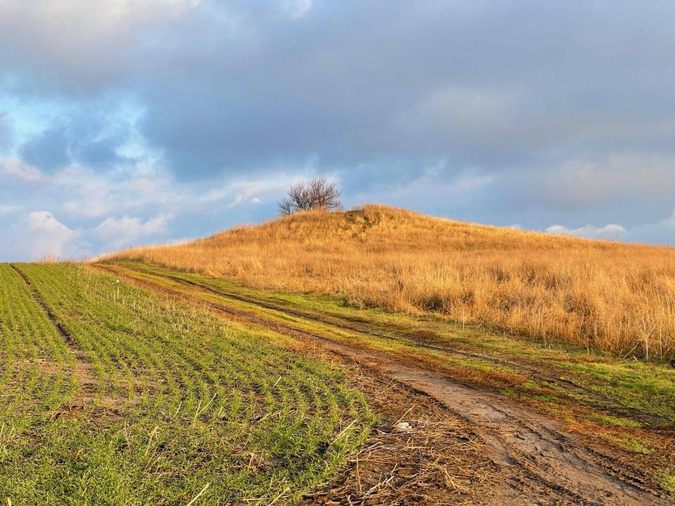 Под Днепром черные археологи разграбили старинный курган