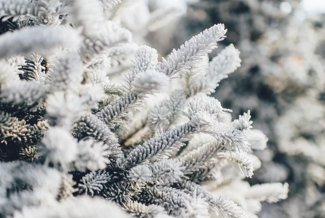 Какая погода будет в Днепре и области 3 января