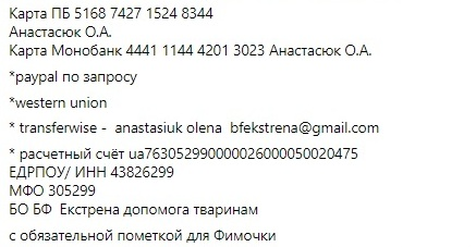 3253253