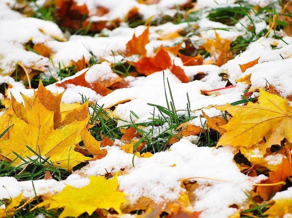 Какая погода будет в Днепре и области 10 января
