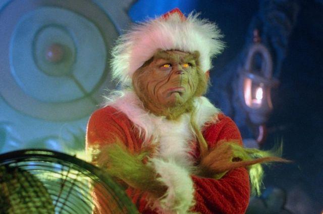 Не неси на мусорку: куда сдать новогоднюю елку в Днепре