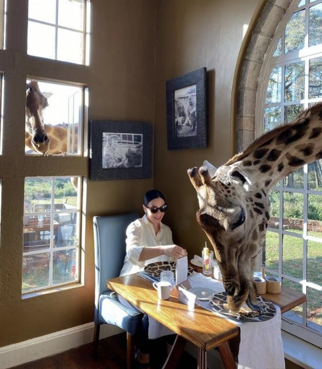 Завтрак с жирафами: жена мэра Днепра Марина Филатова продолжает делиться впечатлениями об Африке