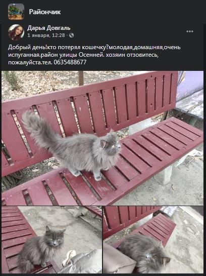 poteryashki2