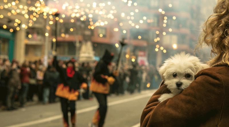 puppy fireworks