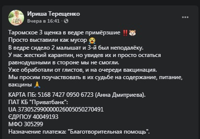 shhenochki