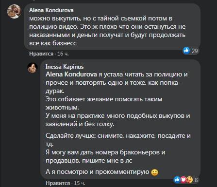 volchitsa1